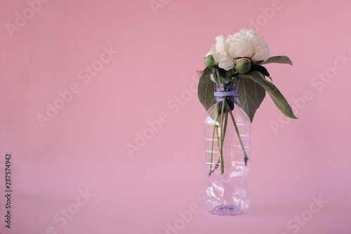 Fototapeta  Peony flower in plastic bottle