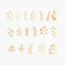 Collection Of Gold Hand Drawn ...
