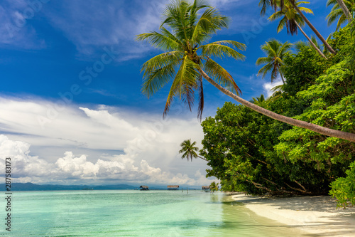 Paradise island - landscape of tropical beach - calm ocean, palm trees, blue sky
