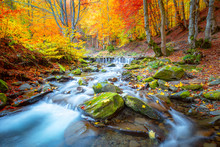 Autumn Landscape -  River Wate...