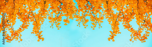 Photo Stands Light blue web banner design for autumn season and end year activity with red and yellow leaves with soft focus light and bokeh background