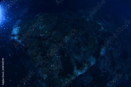 acuático piscina azul mar con textura natación verano claro oceáno abstracta re Canvas Print