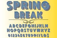 3d Font Typeface Vector Named Spring Break