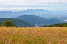 View Of The Blue Ridge Mountai...