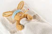 Recovering Bunny. Teddy Rabbit...