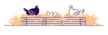 Poultry Farming Flat Vector Il...