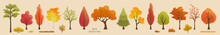 Autumn Trees, Bush, Grass. Set Of Plants. Elements For Vector Flat Design