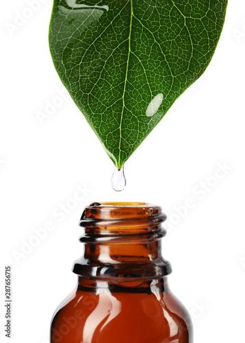 Fototapeta Essential oil drop falling from green leaf into glass bottle on white background, closeup obraz na płótnie