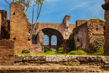 The Basilica Of Maxentius And Constantine In The Roman Forum In Rome
