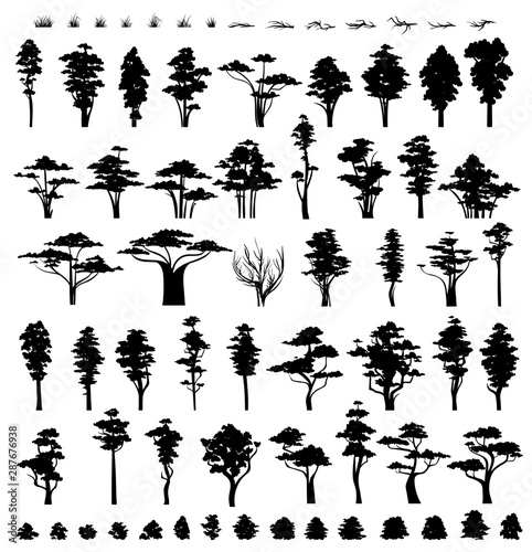 Trees silhouettes isolated on white background Fototapet