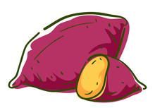 Sweet Potato Superfood Illustration