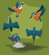 Kingfisher catch fishes Cartoon Vector Animation Sequence
