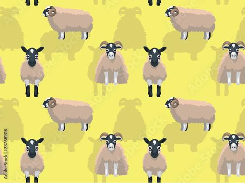 Sheep Scottish Blackface Cartoon Background Seamless Wallpaper Canvas Print