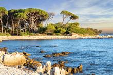 Ile Paradisiaque à Cannes Cô...