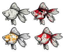 Goldfish Hand Drawing Set Vect...