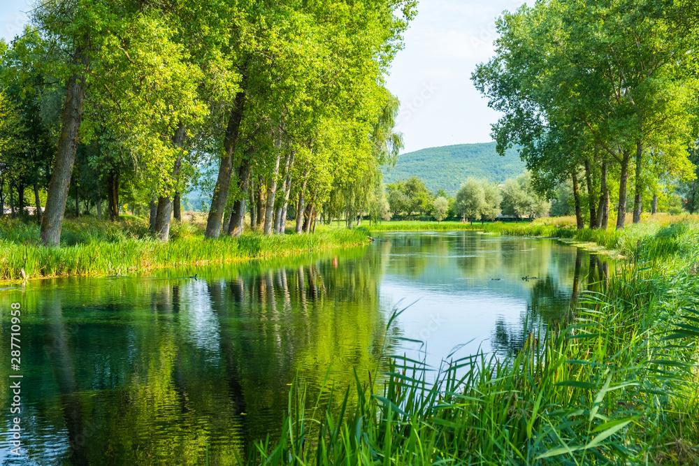 Fototapety, obrazy: Beautiful Gacka river flowing between trees and fields, summer view, Lika region of Croatia