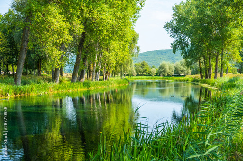 Foto op Aluminium Pistache Beautiful Gacka river flowing between trees and fields, summer view, Lika region of Croatia