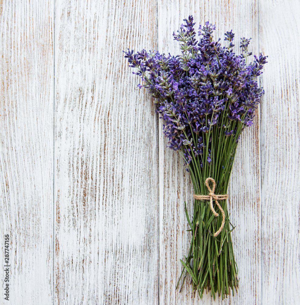 Fototapety, obrazy: Fresh flowers of lavender