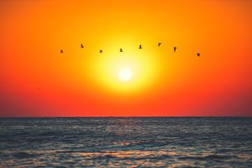 Fototapeta Wschód / zachód słońca Beautiful sunrise over the tropical sea