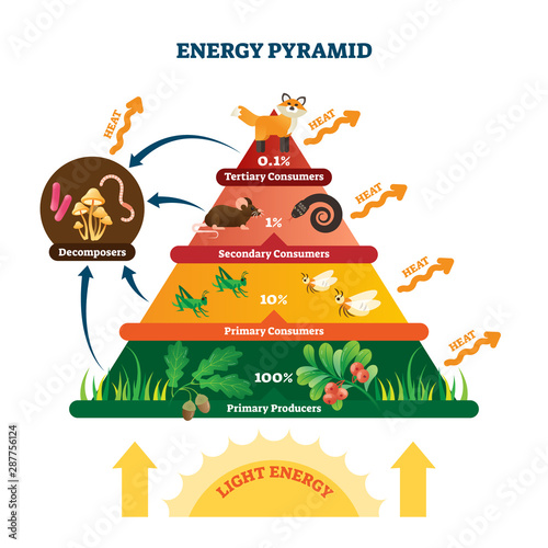 Energy pyramid vector illustration Wallpaper Mural