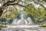 Fototapeta Sawanna - Forsyth Park, Savannah, Georgia, USA fountain