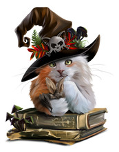Red Cat Sorcerer And Old Books...