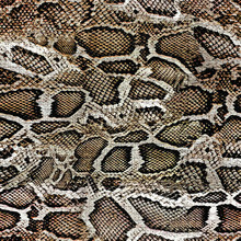 Snake Skin Texture Seamless Pattern