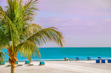 An Endless Deserted Beach With Palm Trees And White Sand And A Number Of Lounge Chairs For Relaxation. Paradise Vacation. Florida. USA.