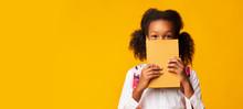 African American Schoolgirl Co...