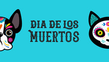 Day Of The Dead, Dia De Los Mo...