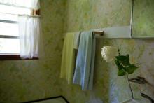 Hydrangea In Vintage Bathroom