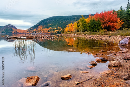 Autmn foliage in Acadia National Park, Maine USA Wallpaper Mural