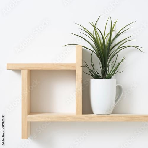 houseplant on wooden shelf Tapéta, Fotótapéta