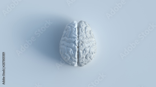 Leinwand Poster  3d render of white human brain with 2 sides include 1 shattered side, top view minimalist concept on white background