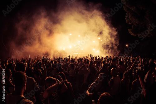 Cuadros en Lienzo  The crowd in a concert