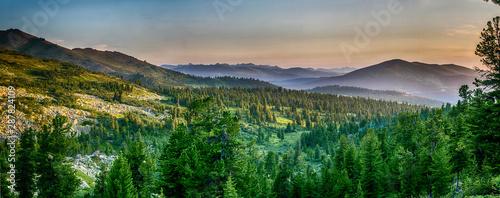 Beautiful sunset view in cedar forest in front of sayan mountain range, Ergaki n Fototapet