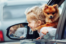 Little Girl And Little Dog In ...