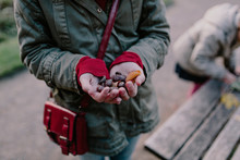 Girl Holding Chestnuts In Her Hand