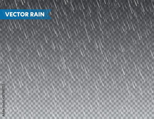 Realistic rain texture on transparent background. Rainfall, water drops effect. Autumn wet rainy day. Vector illustration. Fotobehang
