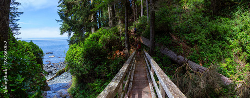 Photo  Adventurous female is hiking Juan de Fuca Trail on the Pacific Ocean Coast during a sunny summer day