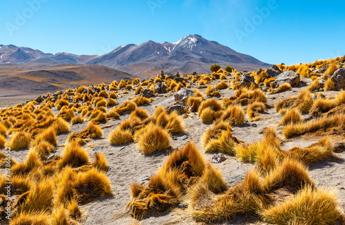 Cuadros en Lienzo  Landscape of the majestic Andes mountain range in Bolivia, South America