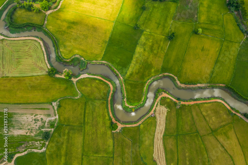 Obraz na plátně  aerial view of devious river in a fields