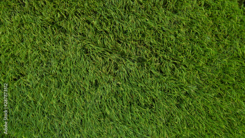 Foto auf Gartenposter Grun aerial view from drone of rice fields in rural