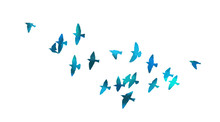A Flock Of Flying Blue Birds. ...