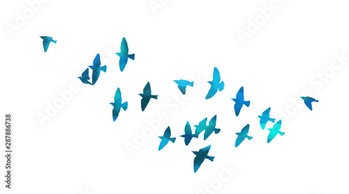 A flock of flying blue birds. Vector illustration Tapéta, Fotótapéta