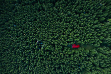 Fairy-tale Little House In The Woods Taken From A Drone.