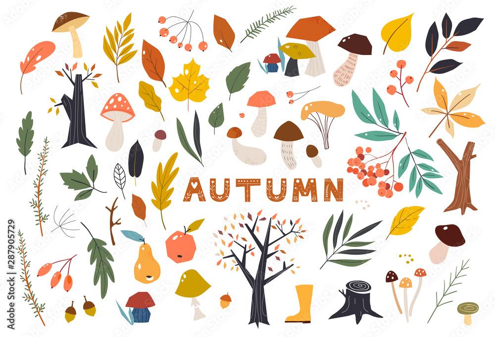Obraz Set of colorful autumn leaves in cartoon style. Seasonal banner. September fall. October party. November sale. Doodle floral elements. Hand drawn vector botany set. fototapeta, plakat