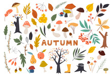 Set Of Colorful Autumn Leaves In Cartoon Style. Seasonal Banner. September Fall. October Party. November Sale. Doodle Floral Elements. Hand Drawn Vector Botany Set.