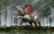 Triceratops Was Ceratopsian Dinosaur That Was A Frilled And Horned, Four Legged Animal. It Lived During The Cretaceous Period. In A Dense Forest. 3D Rendering