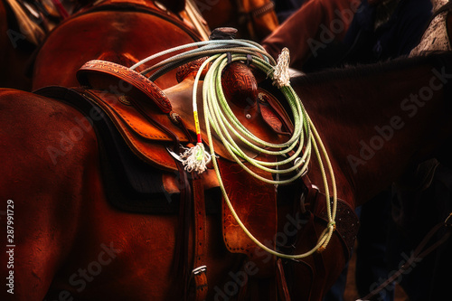 Extreme close up of a saddle and lariat on a brown horse Wallpaper Mural